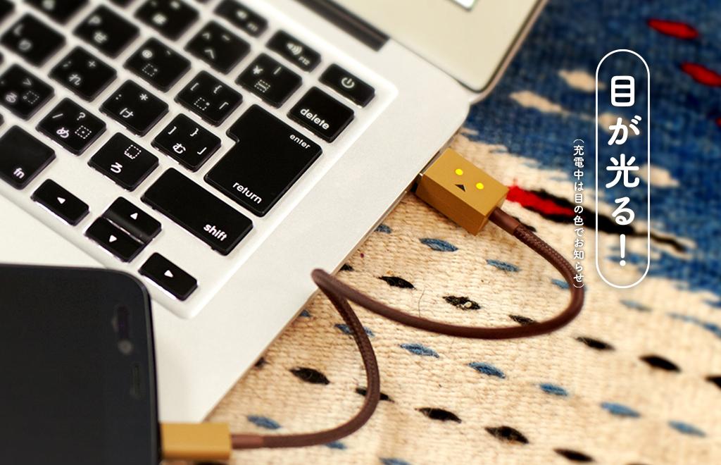 cheero DANBOARD USB Cable main image