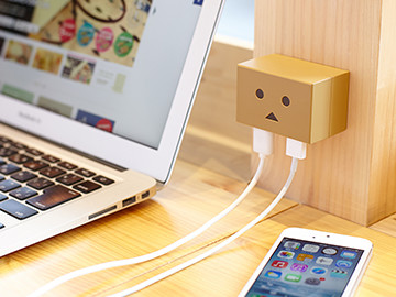 DANBOARD USB AC ADAPTOR