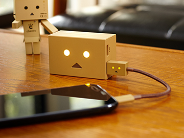 DANBOARD USB Cable micro image02